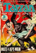 Tarzan Vol 1 209