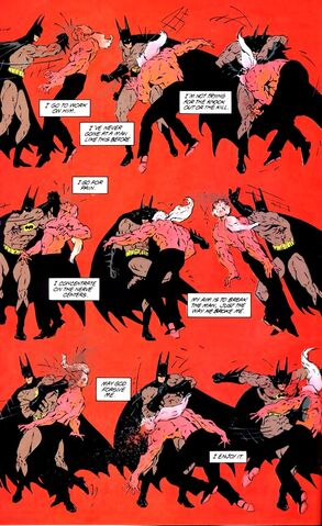 File:Batman 0481.jpg