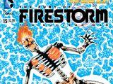 Fury of Firestorm: The Nuclear Men Vol 1 15