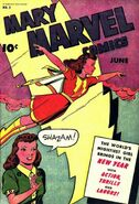 Mary Marvel Vol 1 2
