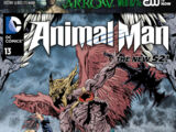 Animal Man Vol 2 13