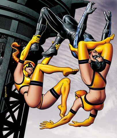 File:Batman Gotham Knights Vol 1 14 Textless.jpg