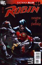 Robin v.4 175