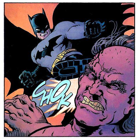 File:Batman 0490.jpg