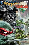 Batman Teenage Mutant Ninja Turtles Vol 1 2