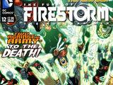 Fury of Firestorm: The Nuclear Men Vol 1 12