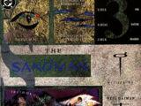Sandman Vol 2 43
