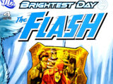 The Flash Vol 3 4