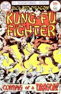 Richard Dragon Kung-Fu Fighter Vol 1 1