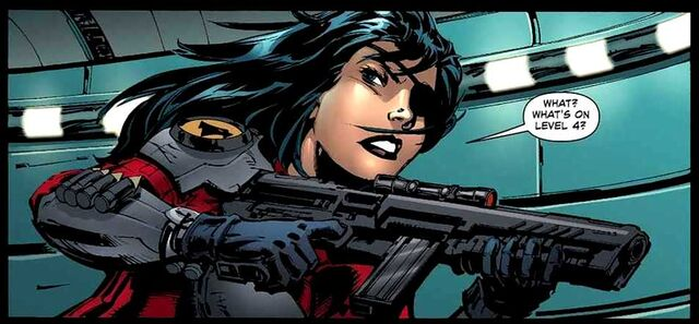 File:Lady Blackhawk New 52 007.jpg