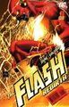 Flash Rebirth 1A