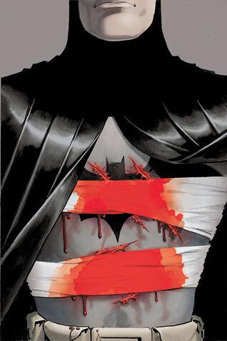 File:Batman 0519.jpg