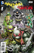 Batman Teenage Mutant Ninja Turtles Vol 1 1