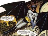 Bruce Wayne (Earth-3839)