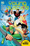 Young Justice The Early Missions