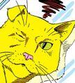PG's cat 02