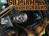 Gotham Underground Vol 1 2