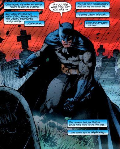 File:Batman 0352.jpg