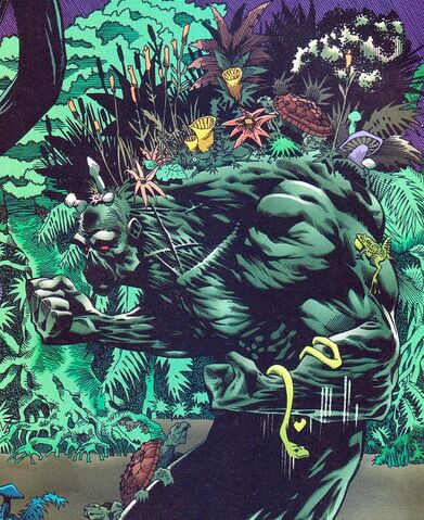 File:Swamp Thing 03.jpg