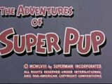 The Adventures of Super Pup (TV Series) Episode: Pilot