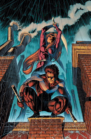 File:Nightwing 0076.jpg