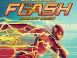 The Flash: Johnny Quick (Novel)