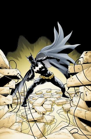 File:Batgirl Cassandra Cain 0039.jpg