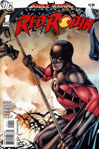 File:Bruce Wayne- The Road Home- Red Robin.jpg