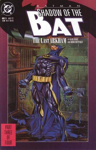 File:Batman - Shadow of the Bat 3.jpg