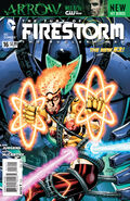 Fury of Firestorm Vol 1 16
