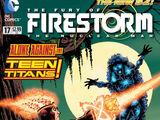 Fury of Firestorm: The Nuclear Men Vol 1 17