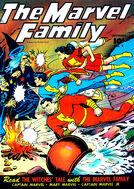Marvel Family 4