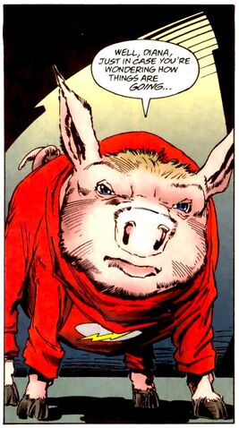File:Flash Pig 001.jpg