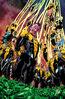 Sinestro: Rising Textless