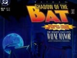 Batman: Shadow of the Bat Vol 1 45