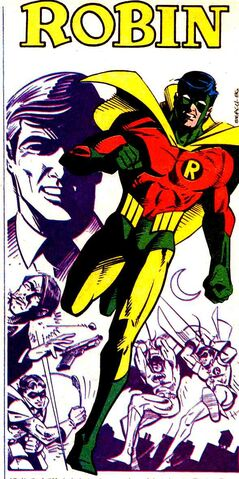 File:Robin Earth-Two 001.jpg
