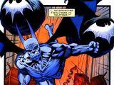 Batman (The Wild)