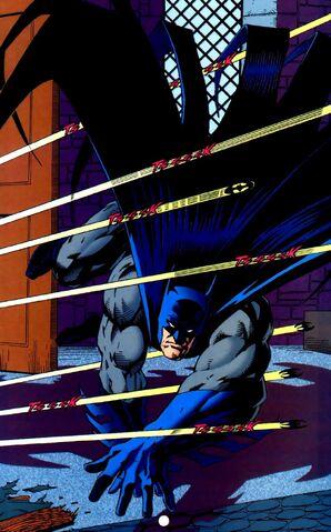 File:Batman 0320.jpg