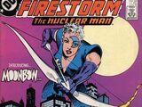 Firestorm Vol 2 48