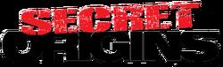Secret Oringins (2014) Logo