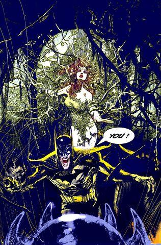 File:Batman 0479.jpg