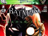 Batman: Arkham City Vol 1 2