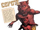 Coyote (DC Animated Movie Universe)
