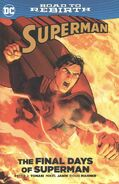 Superman The Final Days of Superman Cover