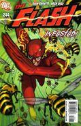The Flash Vol 2 244