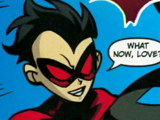 Red Robin (Teen Titans TV Series)