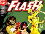The Flash Vol 2 219