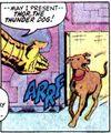 Thor the Thunder Dog 0001