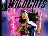 Wildcats: World's End Vol 1 17
