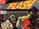 The Flash Vol 2 5